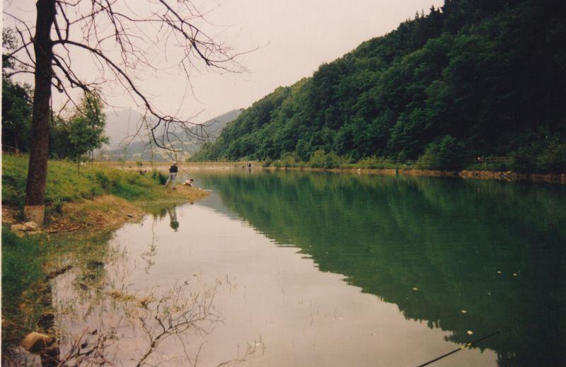Pesca Ciprinidos y Comida 1999