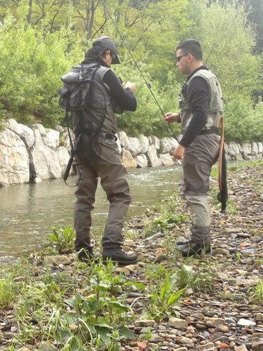 C. Salmonidos Mosca Abusu 2012 (2)