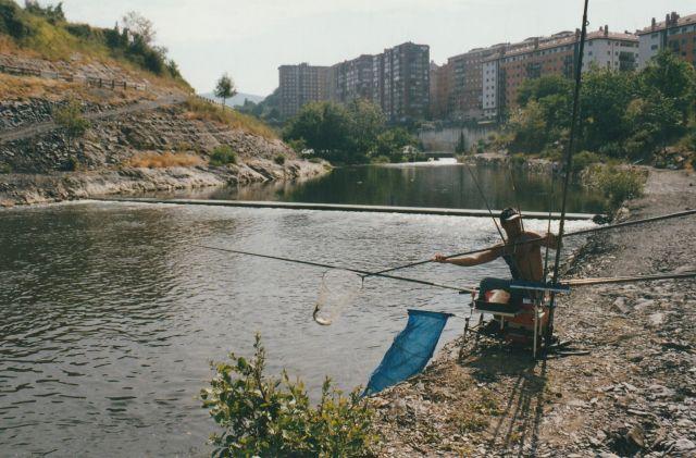 Carpa Festival 2006 2 - copia