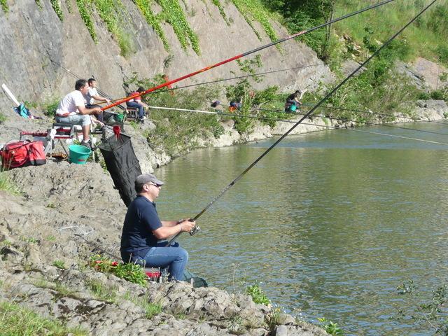 Certamen Pesca Ciprinidos