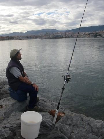 Certamen Roca 2013