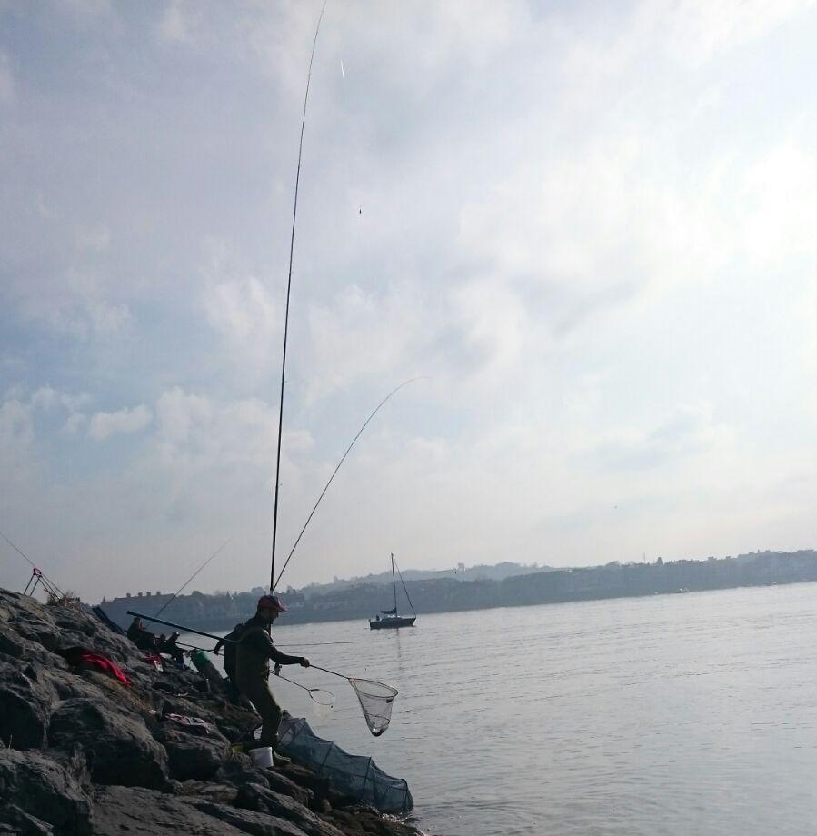 Mar roca Abusu 2017 G