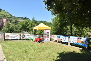 Trofeos Federacion Bizkaia 2018xz - copia